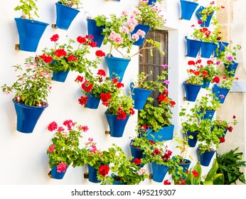Flowers in flowerpot on the walls on streets of Cordoba, Spain