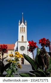 Flowers in the foreground of Our Lady of Hungary Church, Keszthely / Hungary