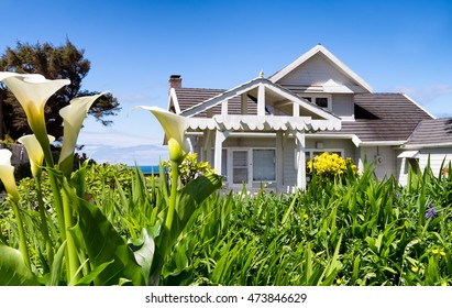 Flowers frame a view of a classic vintage white shingled beach cottage on the Oregon coast in the Pacific Northwest USA. Ocean is seen in the background.