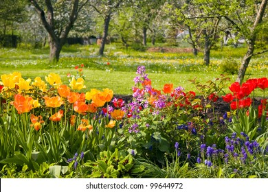 Flowers in front of orchard garden in springtime