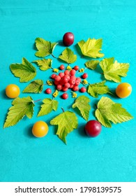 Flowers and fruits laid in a round frame on blue background