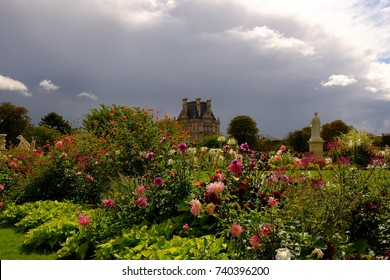The flowers garden of Autumn in paris, France