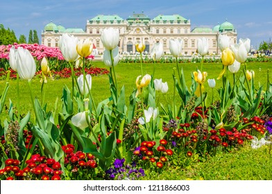 Flowers in the garden of Belvedere Palace in the city of Vienna, Austria