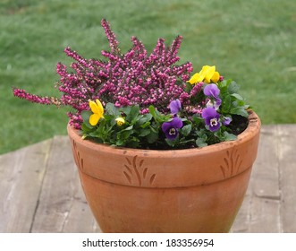 Flowers in garden pot