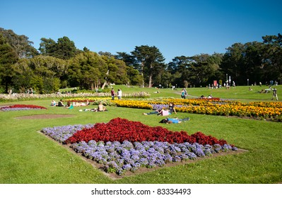Flowers in Golden Gate Park