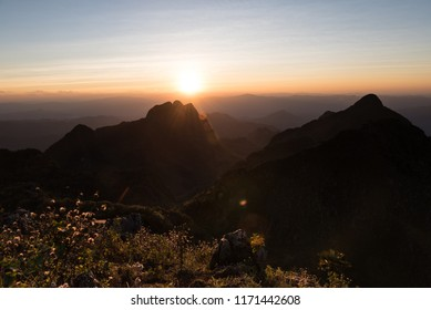 Flowers and grass in foreground, with mountain and gradient sky in background and sunset flare