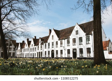 Flowers, Grass, White Buildings in Bruges, Belgium