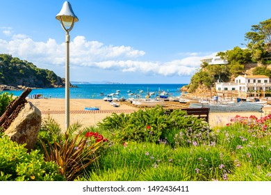 Flowers and green plants on coastal promenade and view of fishing boats on beach in beautiful Sa Riera village, Costa Brava, Catalonia, Spain