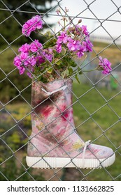 Flowers grow from a childrens boot attached to a fence