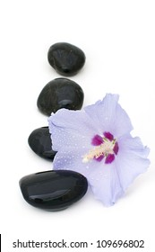 flowers of hibiscus and spa stones