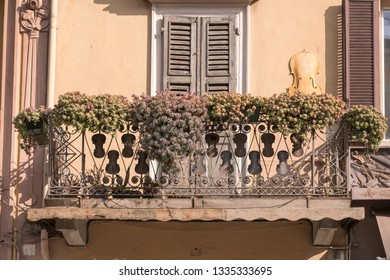 flowers and iron violin shapes on art wrought iron railing of old balcony in city center, shot in bright winter light at Cremona, Lombardy,  Italy