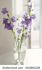 Flowers lilac bells in a glass vase stand on a white table in the interior