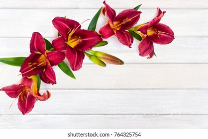 Flowers lilies daylily (Red Magic) on background of white painted wooden planks with space for text. Top view, flat lay
