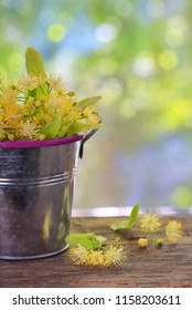 Flowers of linden tree in bucket on wooden background