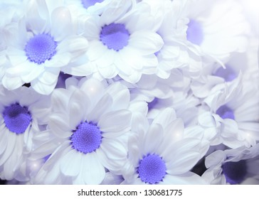 flowers made with color filters. blue daisy.