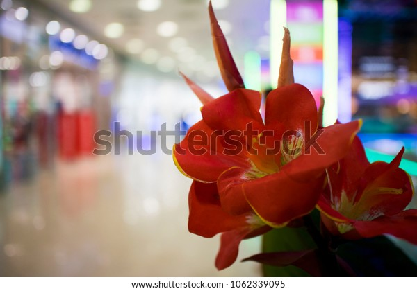 Flowers in the mall corridor. selective focus, copy space