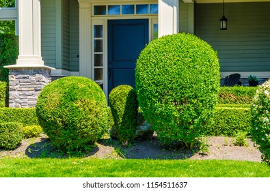 Flowers, nicely trimmed bushes in front of the house, front yard. Landscape design.