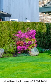 Flowers, nicely trimmed bushes and stones in front of the house, front yard. Landscape design.