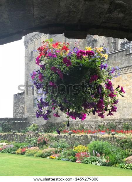 Flowers in an old castle garden.