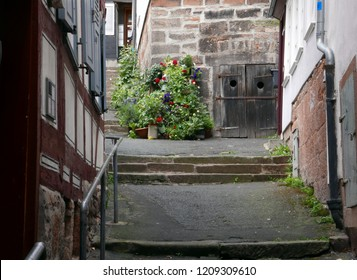 Flowers in an old European town