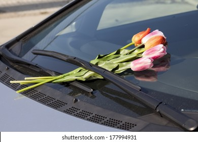 Flowers on Car