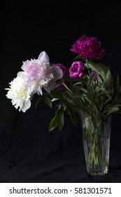 Flowers on a dark background