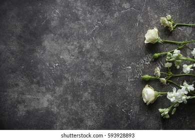 Flowers on a dark background, Copy Space, Decor, Floristry, Top view