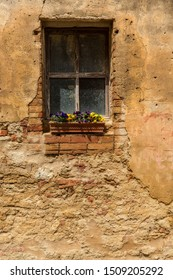 Flowers on an old brick window sill
