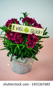 flowers on pink background, with good luck (viel Glück)
