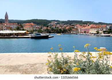 Flowers on a promenade in Supetar, Brac island, Croatia. Selective focus. Supetar is popular summer travel destination.