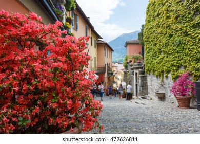 Flowers on a street of Bellagio, Italy