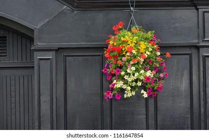 Flowers on Traditional Irish pub facade