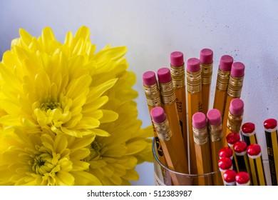 Flowers & Pencils