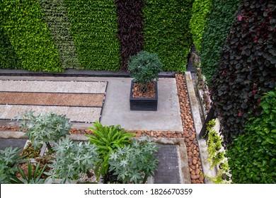 flowers and Plants in a garden,garden design .