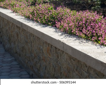 Flowers and plants on the retain wall
