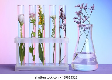 Flowers and plants in test tubes on wooden background. The concept of biological research.