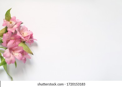 Flowers for the postcard background