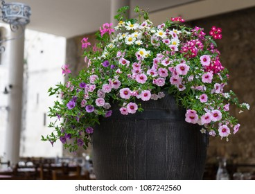 Flowers in a pot on the table