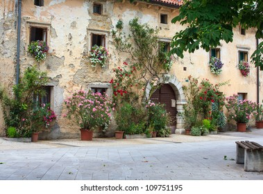 A lot of flowers pots in the facade house