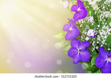 flowers are purple orchids on a Sunny background with reflections