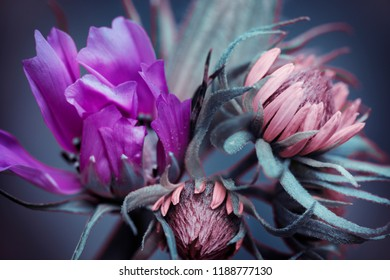 flowers with purple and pink buds, small bouquet.