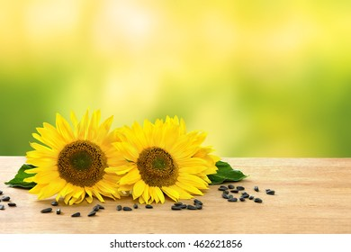 Flowers and seed of sunflower on wooden table on defocused of natural background with space for text