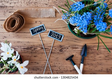 Flowers, Signs, wooden background with Text Spring 2019