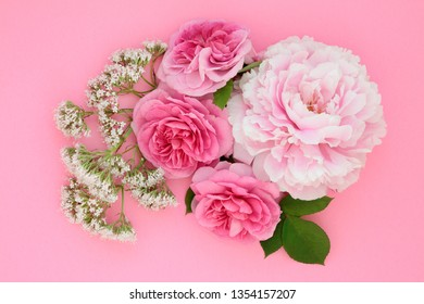 Flowers of summer with peony, valerian and rose also used in herbal medicine and naturopathic cures. Top view flat lay on pink background.