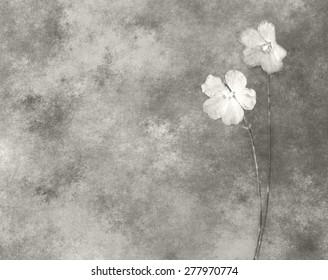 Flowers - sympathy card