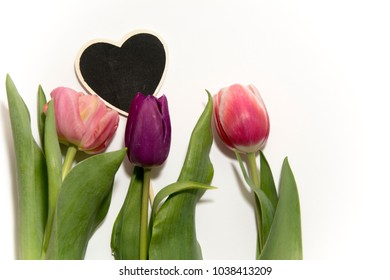flowers tulips heart