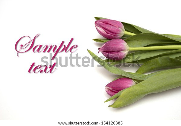 Flowers - tulips with the text. Photo.