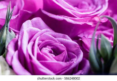 flowers for valentine's day