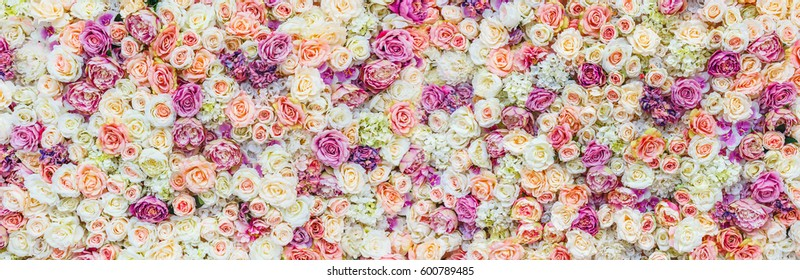 Flowers wall background with amazing red and white roses, Wedding decoration, hand made