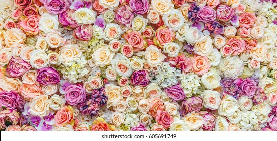 Flowers wall background with amazing red and white roses, Wedding decoration, hand made. Toning.